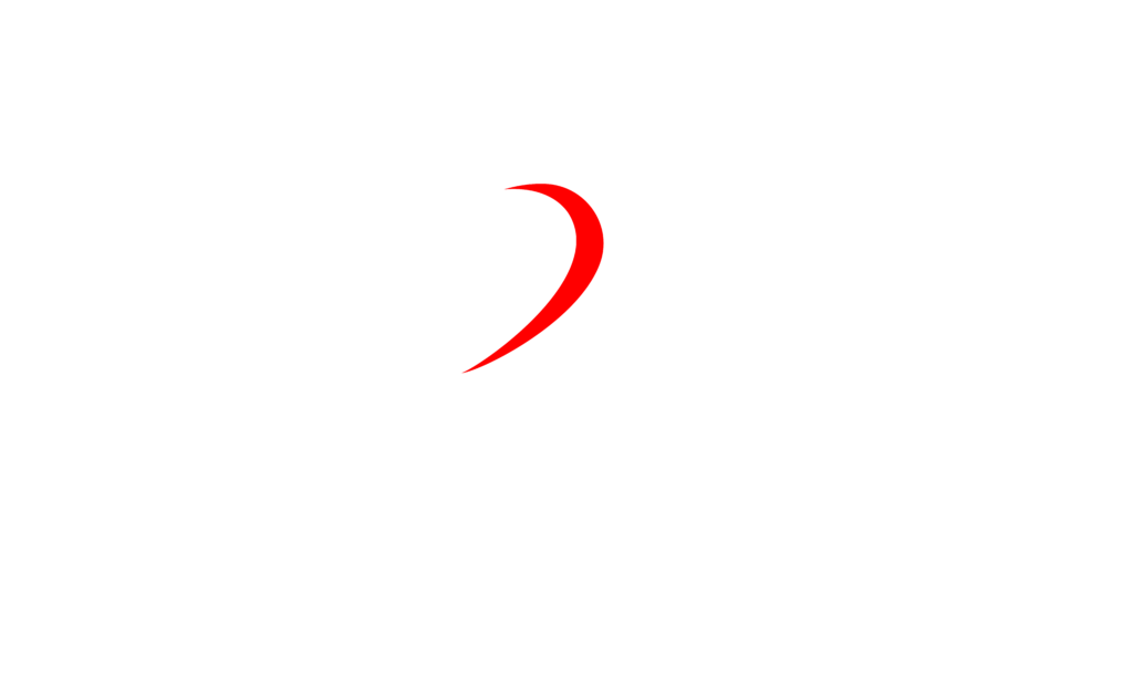 birchwood physiotherapy logo